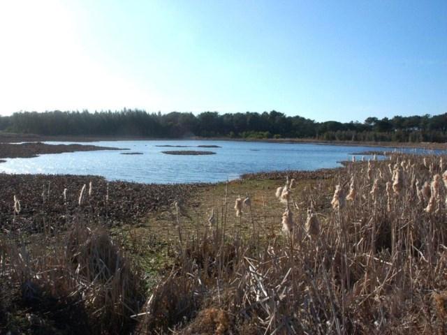 Lagoa da Salgueira